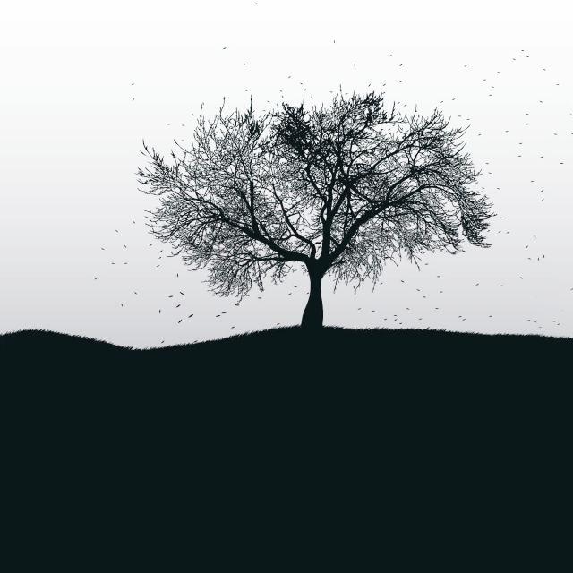 ابی آهنگ درخت دانلود آهنگ درخت از ابی (توی تنهایی یک دشت بزرگ) با کیفیت 320 و متن