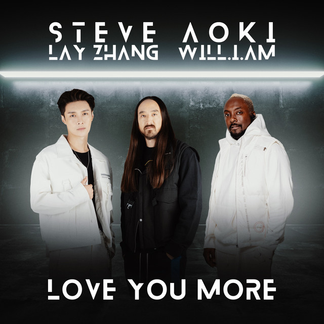 Steve Aoki - Love You More