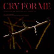 دانلود آهنگ Cry For Me از توایس (Twice) با کیفیت اصلی و متن