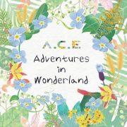 آلبوم کره ای A.C.E Adventures in Wonderland از گروه A.C.E با کیفیت اصلی