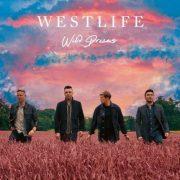 آهنگ جدید Starlight از گروه Westlife با متن